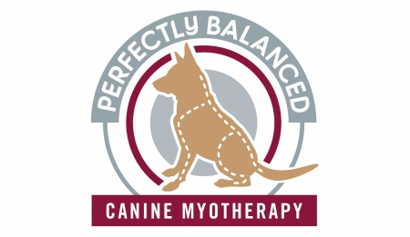 Perfectly Balanced Canine Myotherapy Gallery